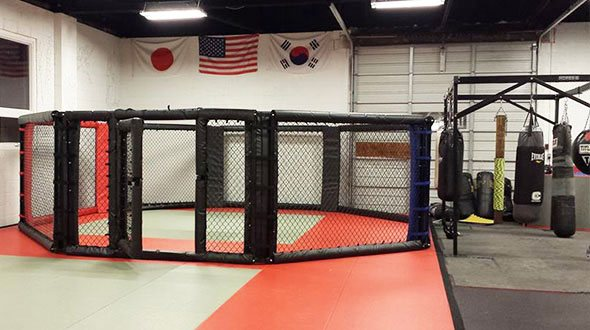 MMA Cage and Bags