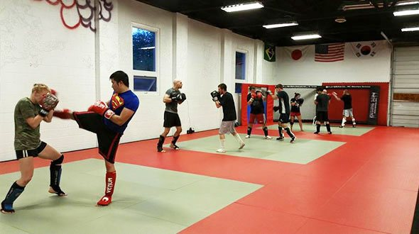 Light MMA Sparring